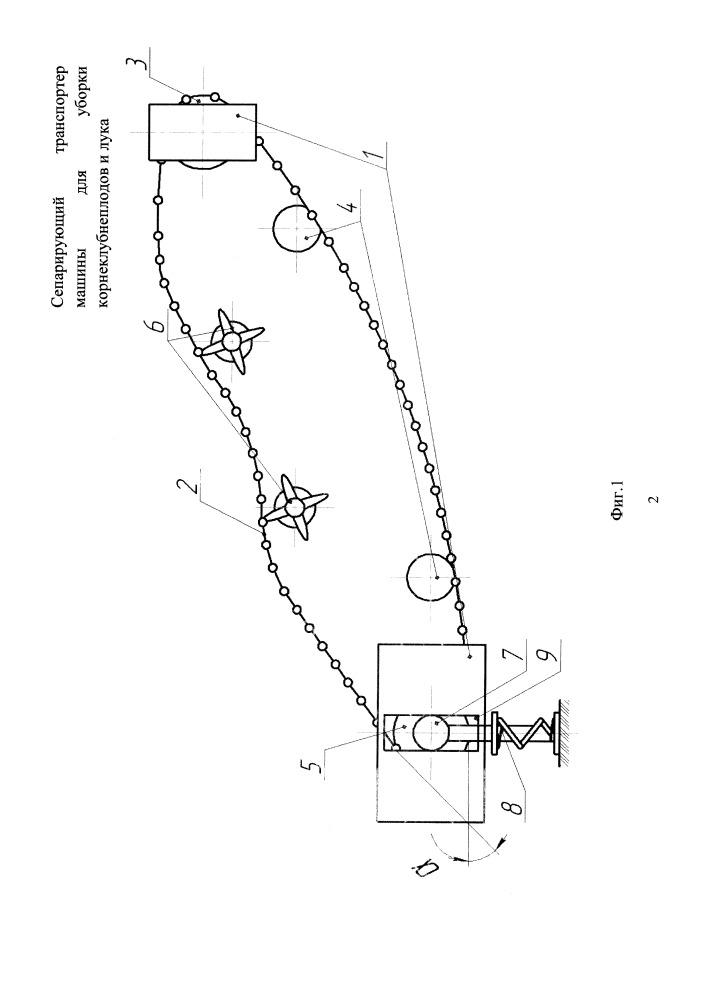 Сепарирующий транспортер машины для уборки корнеклубнеплодов и лука