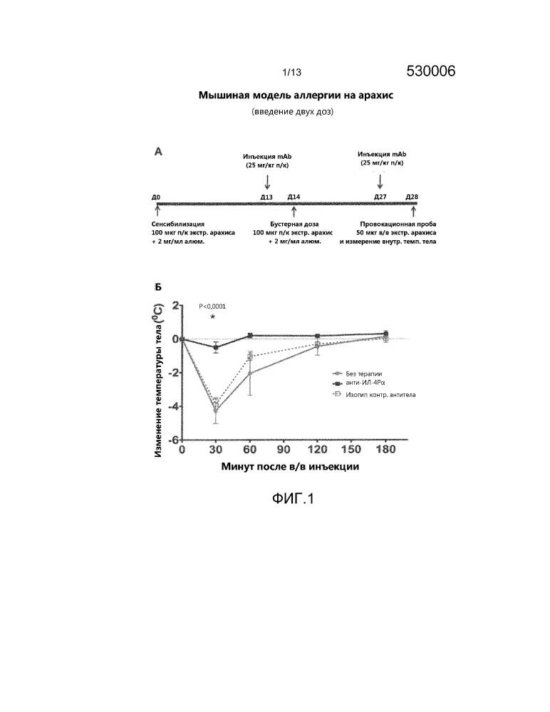 Способы лечения аллергии и повышения эффективности аллерген-специфической иммунотерапии путем введения ингибитора ил-4р
