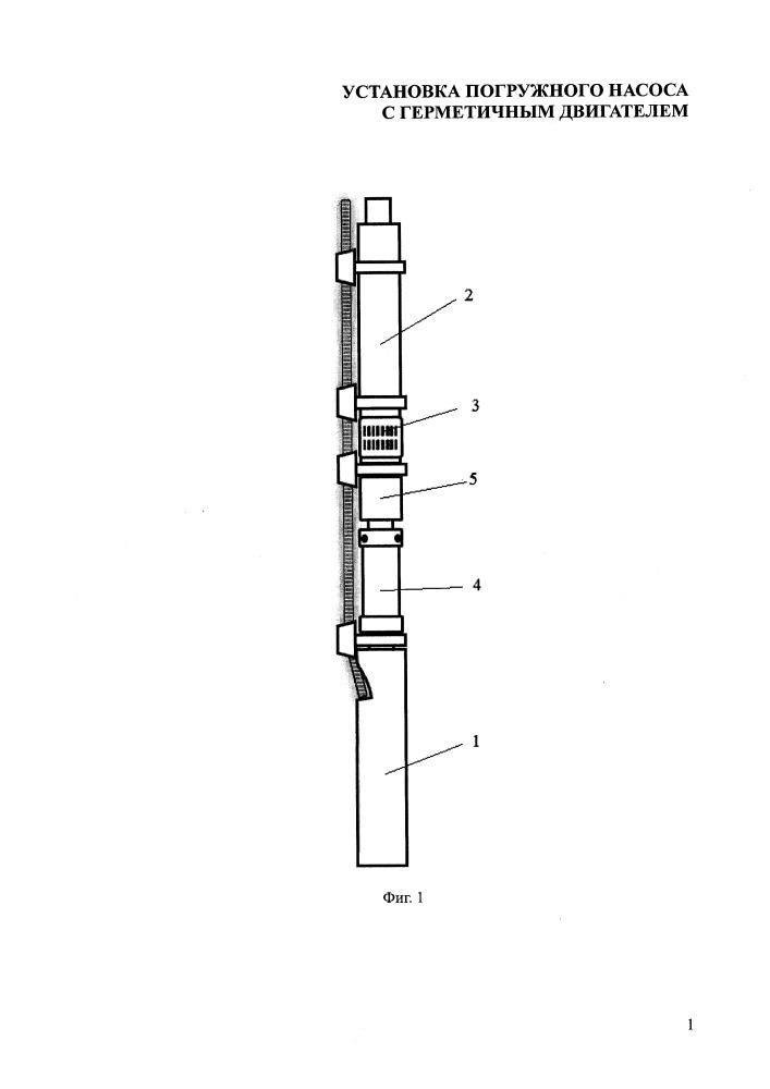 Установка погружного насоса с герметичным двигателем