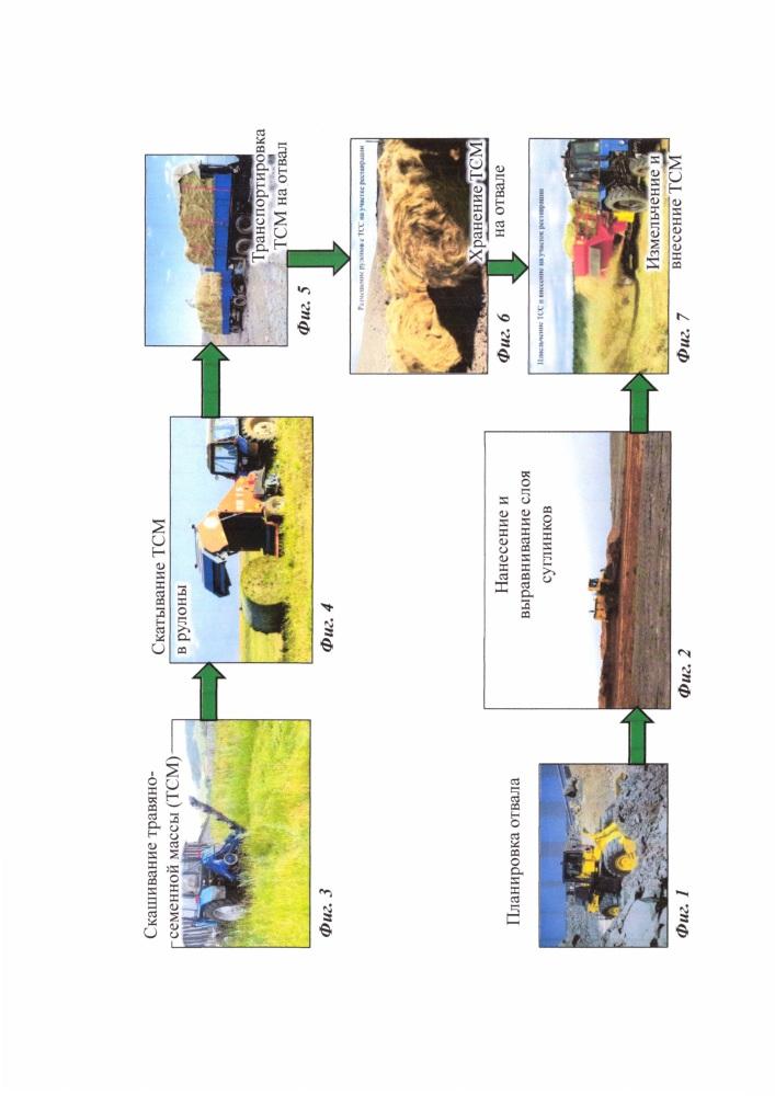 Способ восстановления экосистем, нарушенных при разработке месторождений полезных ископаемых открытым способом
