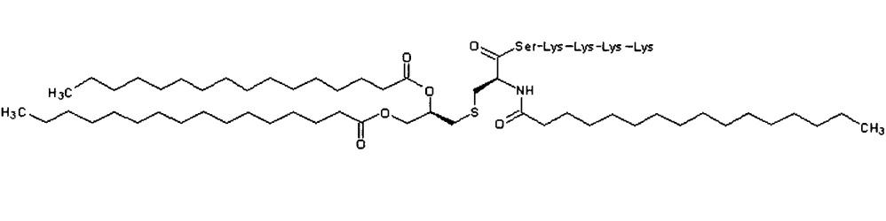Композиция противораковой вакцины, содержащая пептид wt1, для трансдермального введения