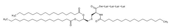 Вакцинная композиция против злокачественной опухоли на основе пептида wt1 для мукозального введения
