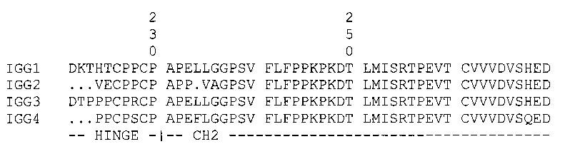 Модифицированные асимметричные антитела, связывающие fc-рецептор, и способы их применения