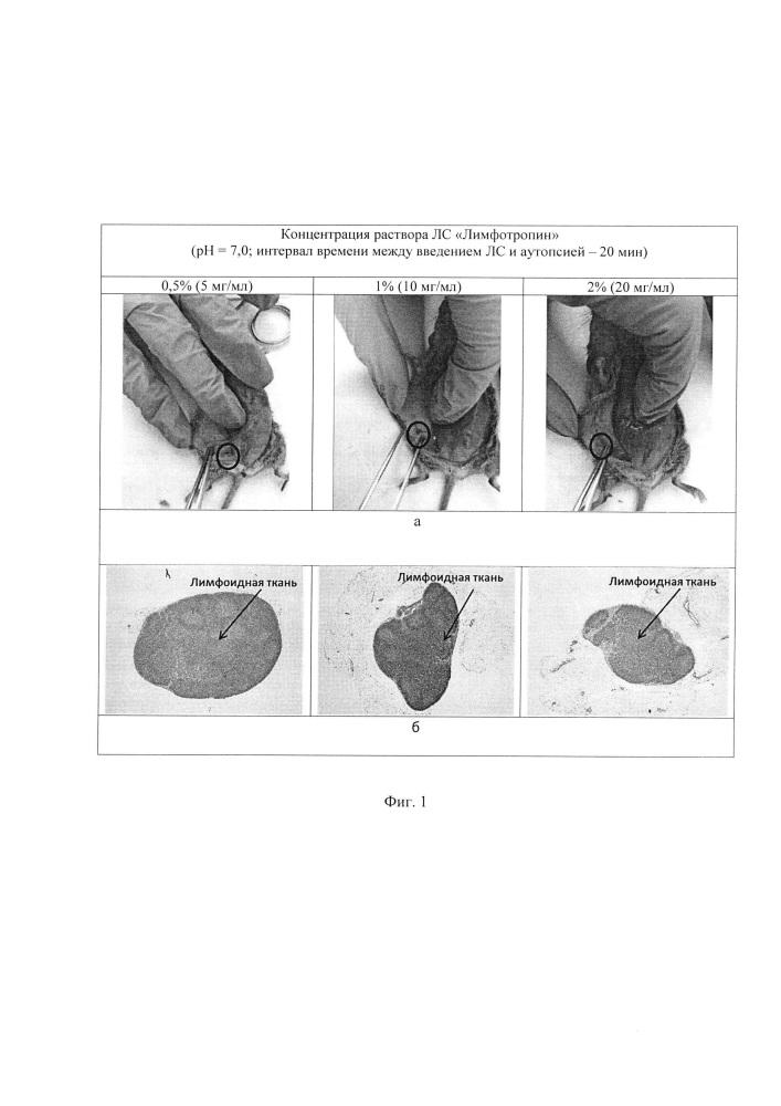 Фармацевтическая композиция для интраоперационной визуализации лимфатических узлов методом непрямой цветной лимфографии