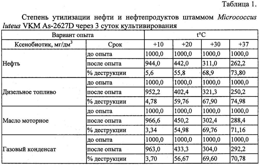 Штамм бактерий micrococcus luteus vkm aс-2627d - деструктор нефти и нефтепродуктов