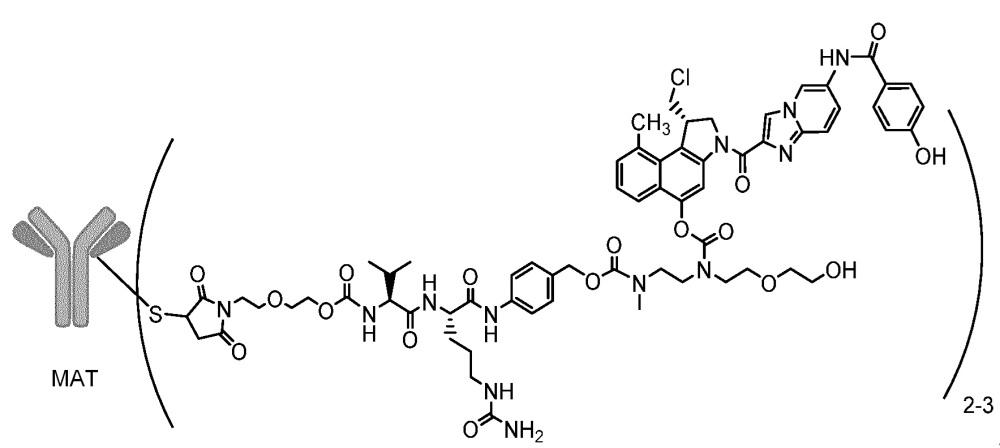 Композиции, содержащие конъюгаты антитело-лекарственное средство дуокармицин