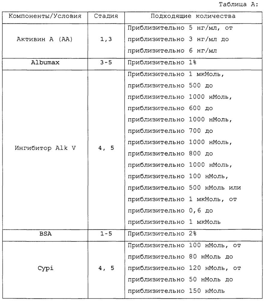 Суспендирование и кластеризация плюрипотентных клеток человека с целью их дифференцировки в панкреатические эндокринные клетки