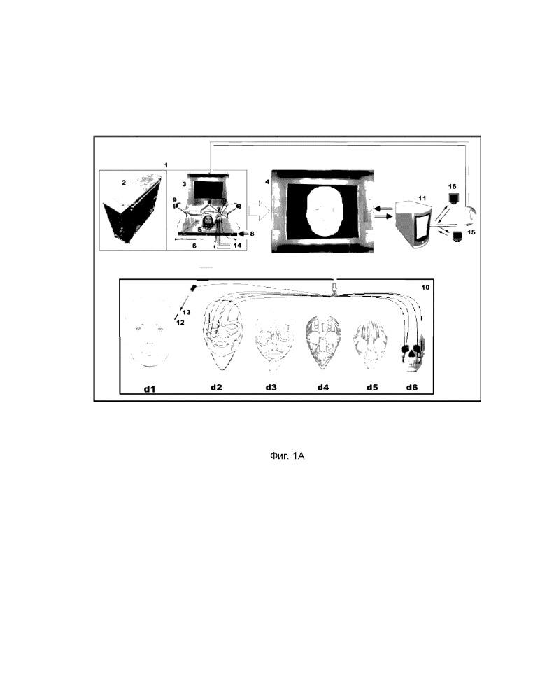 Система обучения и оценки выполнения медицинским персоналом инъекционных и хирургических минимально-инвазивных процедур