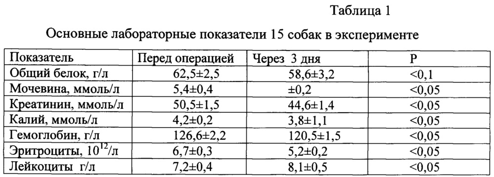 Способ определения жизнеспособности шовной полосы кишки