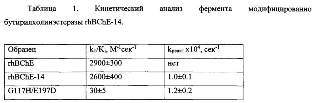 Рекомбинантная плазмидная днк pfuse-marx-29-prad-f2a/bche-14, содержащая ген модифицированной бутирилхолинэстеразы человека, предназначенная для экспрессии гена бутирилхолинэстеразы в клетках млекопитающих для терапии отравлений фосфорорганическими токсинами