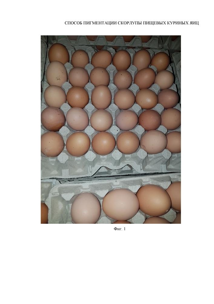 Способ пигментации скорлупы пищевых куриных яиц