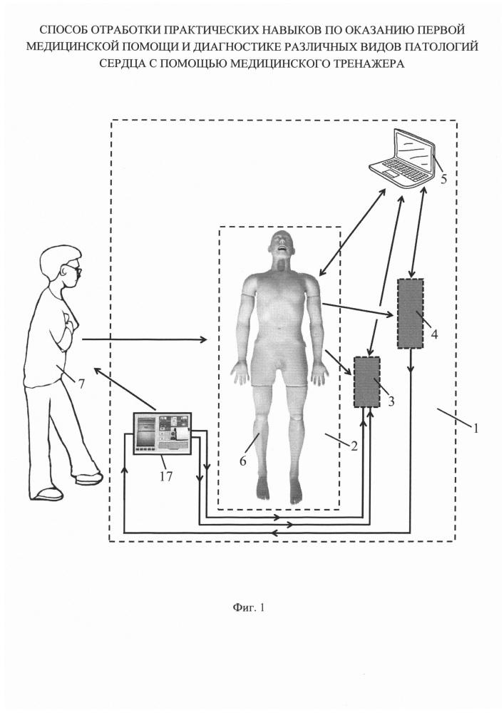 Способ отработки практических навыков по оказанию первой медицинской помощи и диагностике различных видов патологий сердца с помощью медицинского тренажера
