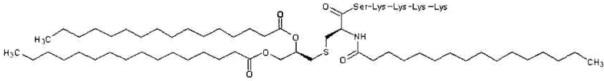 Препарат противораковой вакцины, содержащий пептид wt1, в форме ленты трансдермального введения