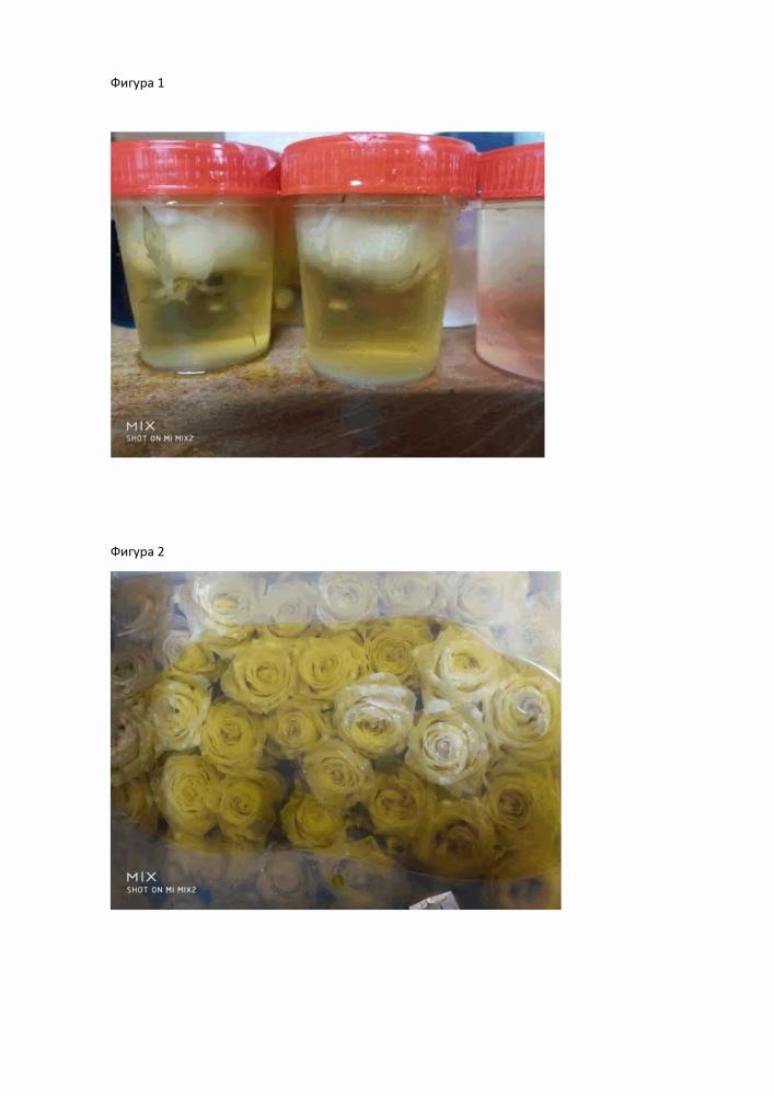 Метод консервации и/или окрашивания растительного материала, включая срезанные цветы