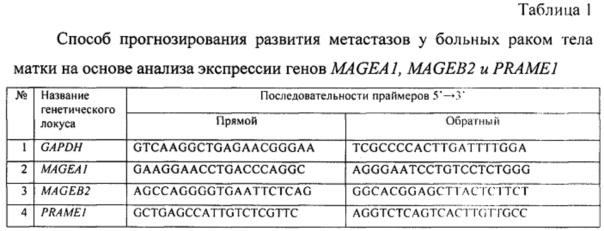 Способ прогнозирования развития метастазов у больных раком тела матки на основе анализа экспрессии генов magea1, mageb2 и prame1