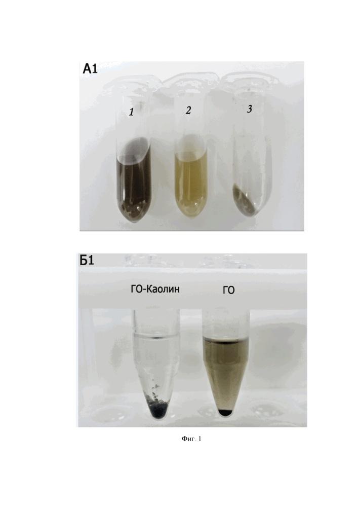 Способ детоксикации водных сред, загрязненных оксидом графена