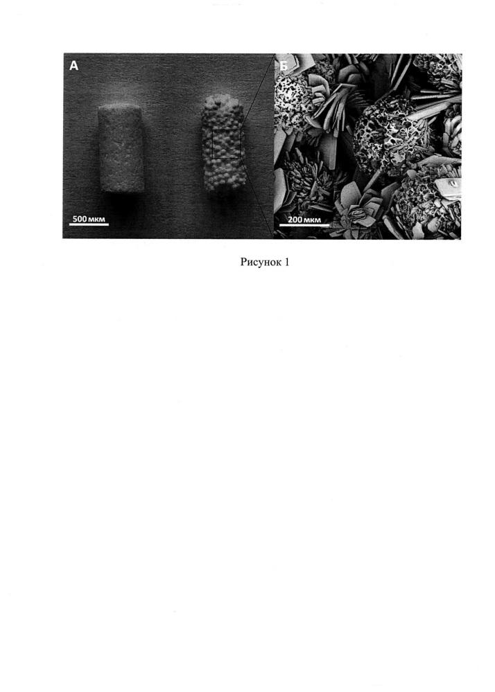 Способ изготовления матриксов на основе низкотемпературных модификаций фосфатов кальция для костной инженерии