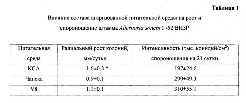 Штамм гриба alternaria sonchi г-52 визр, обладающий гербицидной активностью против осота полевого (sonchus arvensis l.)