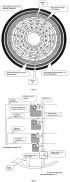 Способ формирования видеосигнала в телевизионно-компьютерной системе для контроля промышленных изделий, имеющих форму кругового кольца