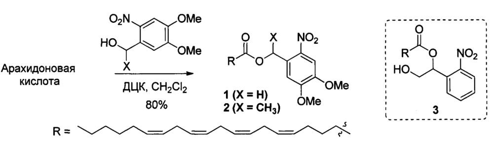 Водная эмульсия на основе диметоксинитробензиловых эфиров арахидоновой кислоты