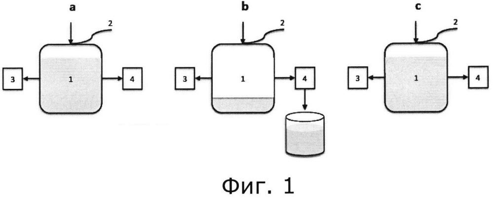 Способ отъемно-доливной ферментации с высокой плотностью клеток