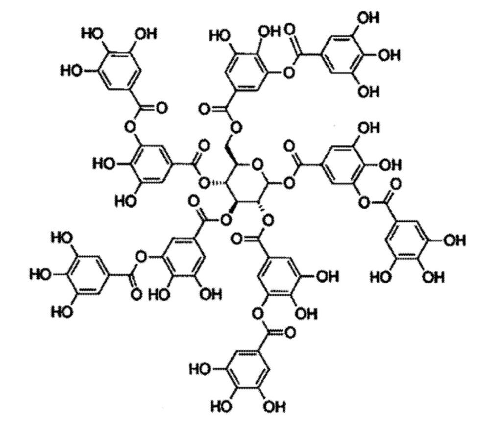 Покрытия на изделиях, включающие слой олигомеризованного полифенола, и биологические методы применения
