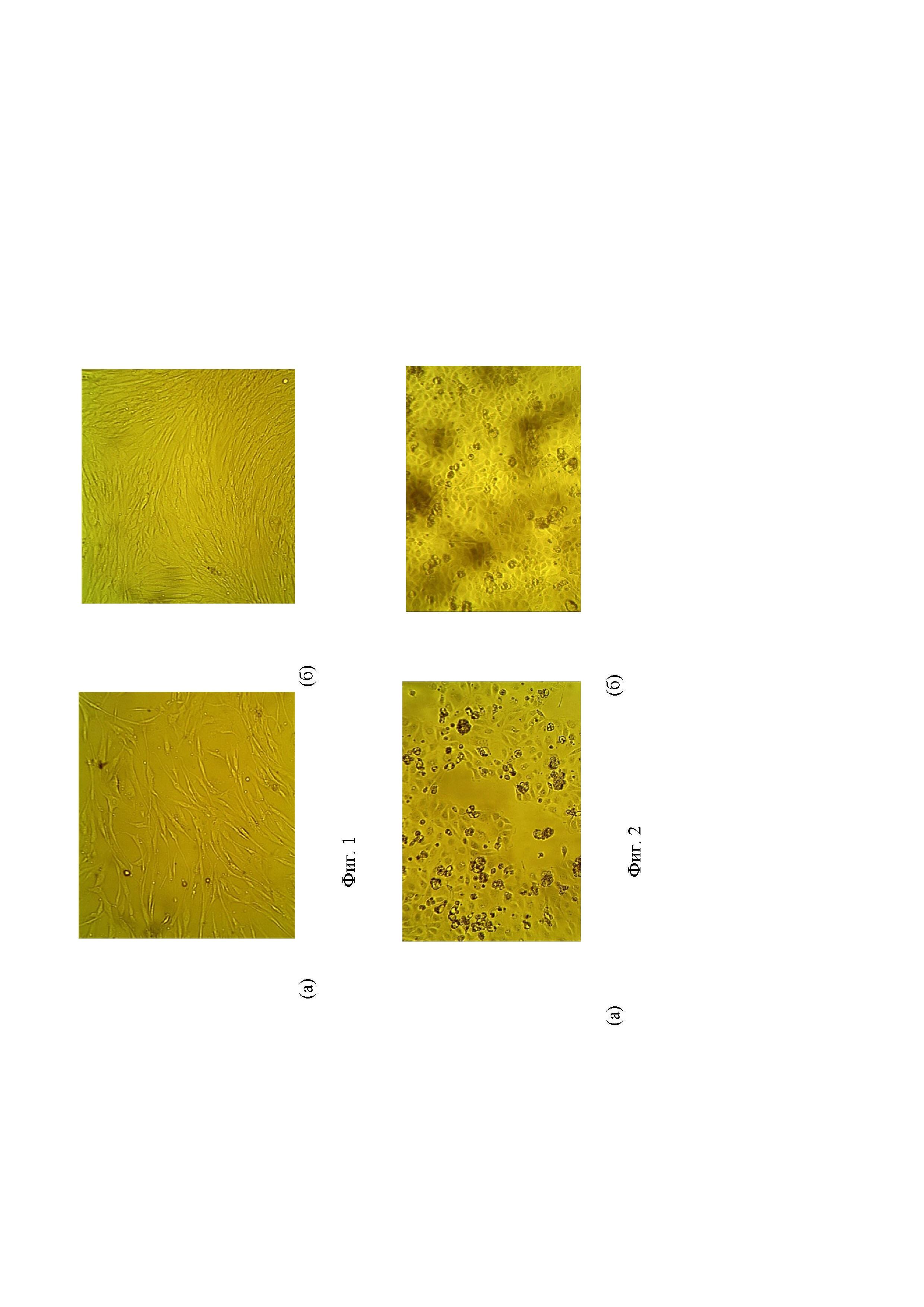 Добавка для культивирования эпителиальных клеток