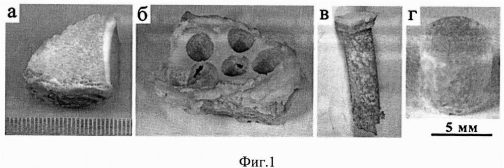 Способ подготовки образцов субхондральной костной ткани человека для изучения ее механических характеристик при одноосном сжатии