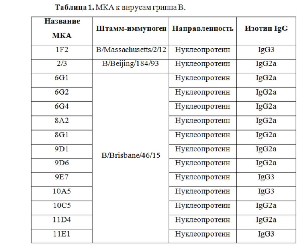 Моноклональные антитела, специфичные к различным штаммам вируса гриппа в