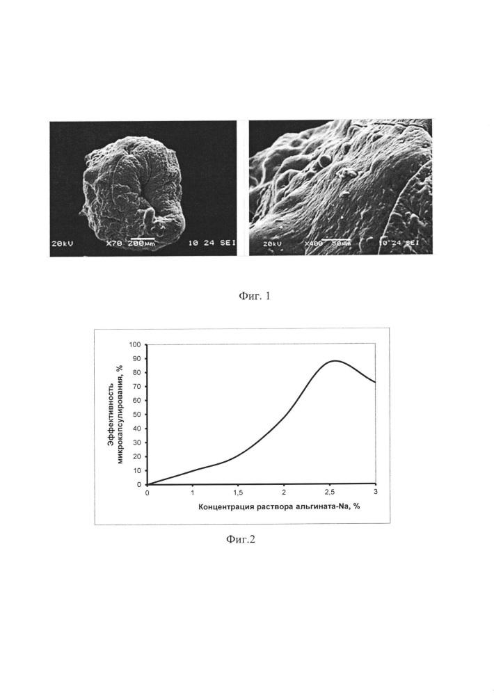 Способ получения альгинат-хитозановых микрокапсул с винпоцетином