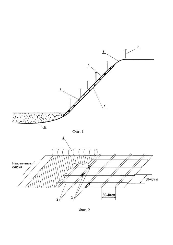 Способ интенсификации восстановления почвенно-растительного покрова нарушенных склонов