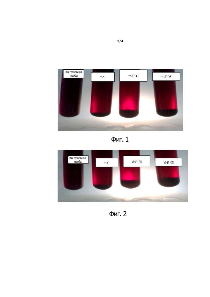 Применение дрожжевого экстракта для осветления сусла и напитков