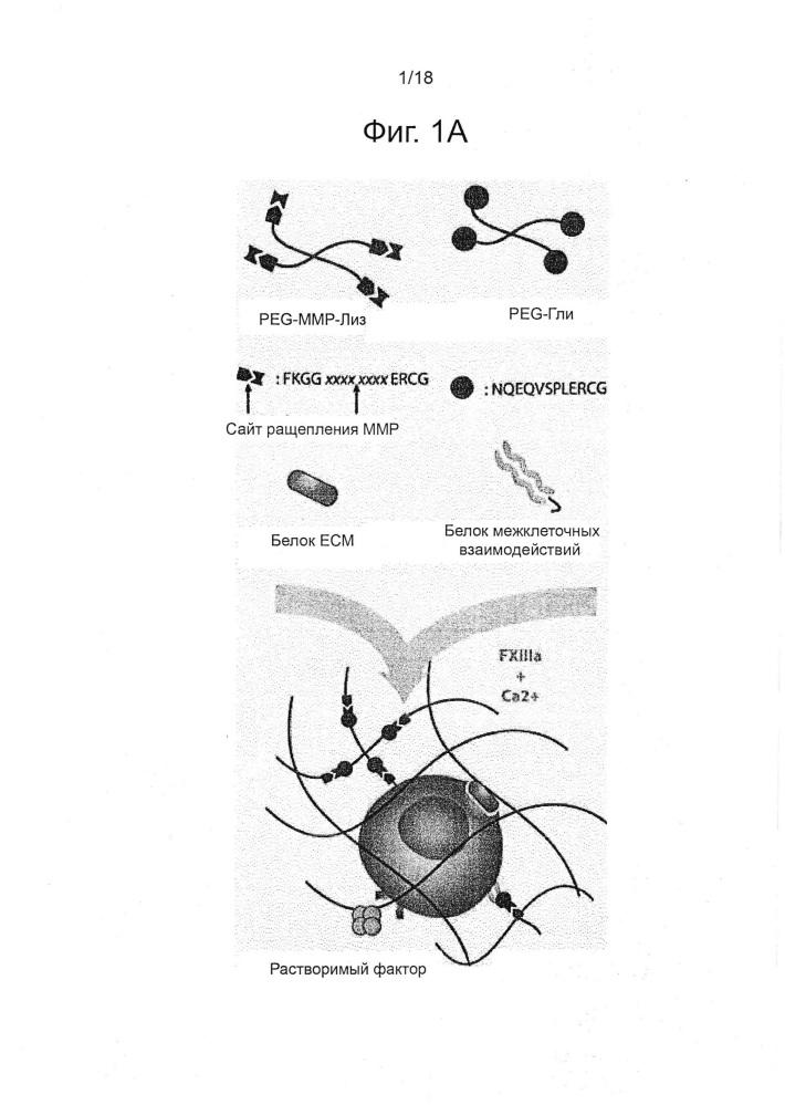 Панели дискретных микроокружений клеточных культур, способы изготовления таких панелей и их применения