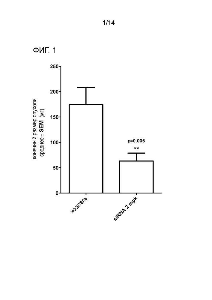 Препараты, осуществляющие рнк-интерференцию, для модуляции гена gst-pi