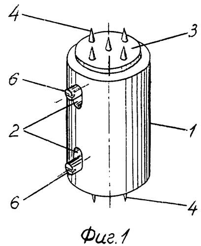 Фиксатор позвоночника и устройство для его установки