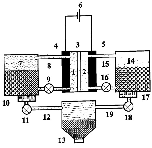 Способ получения белковой кормовой добавки из растительного сырья и устройство для его осуществления