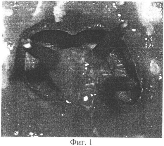 Огнеупорная модель аболмасов