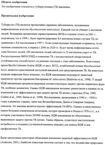 Туберкулезные вакцины, содержащие рекомбинантные штаммы бцж, экспрессирующие аланиндегидрогеназу, сериндегидратазу и/или глютаминсинтетазу